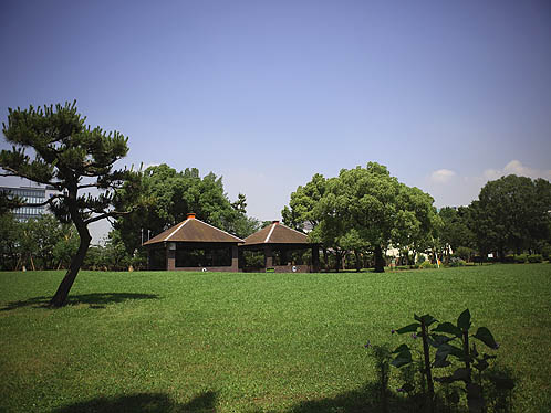 平和島公園キャンプ場