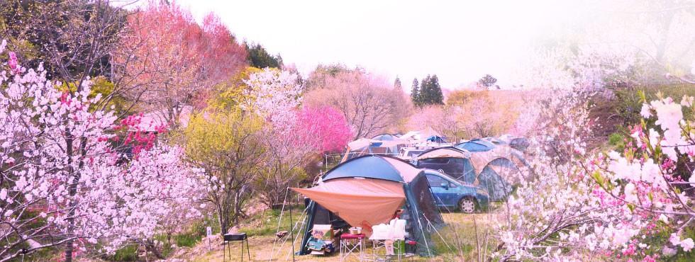 三河高原キャンプ村